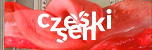 Czeski sen_plakat